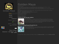 Canil Golden Maya